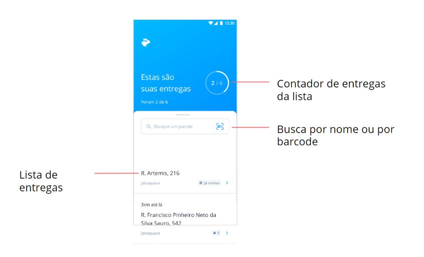 aplicativo_para_entregar_4.png